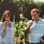 Deluxe Vineyard Experience with Lunch and Champagne