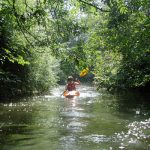 Kayaking East Sussex
