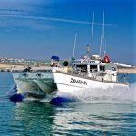 Deep Sea Fishing Brighton