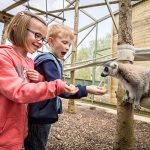 Junior Zoo Keeper for Two Shropshire