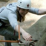 Rock Climbing in Kent